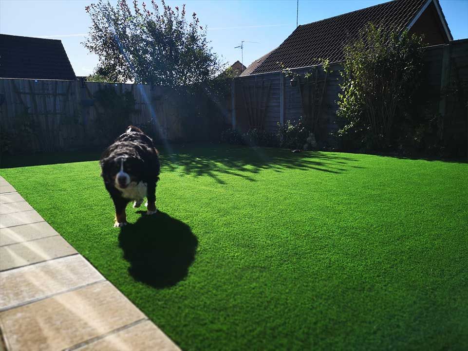 Creating a dog friendly garden with synthetic grass