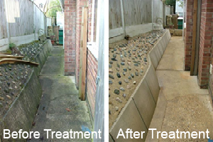 paving slabs before and after treatment